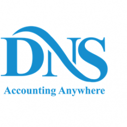 dns_logo_250