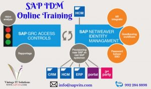SAP IDM Online Training.jpg