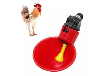 Chicken-Drinking-Cups.jpg