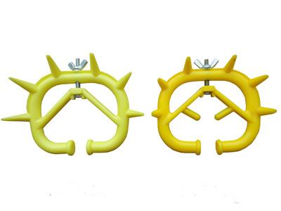 Ox-Nose-Thorn.jpg