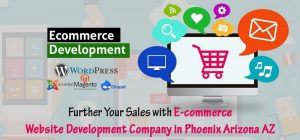 Ecommerce-Website-Development-Company-in-Phoenix-Arizona-AZ.jpg