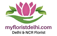 myfloristdelhi-logo.jpg