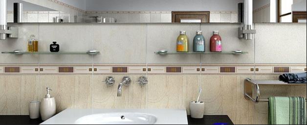 BAthroom Accessories.png