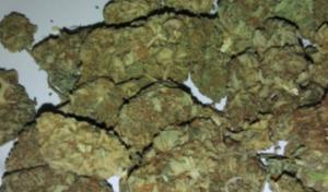 Buy Weed Online UK.png